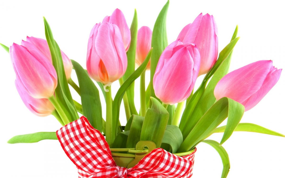 Або які квіти дарувати на 8 березня