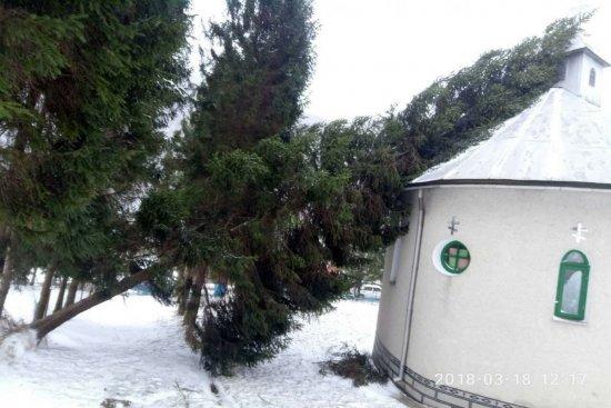 На Закарпатті дерево впало на церкву