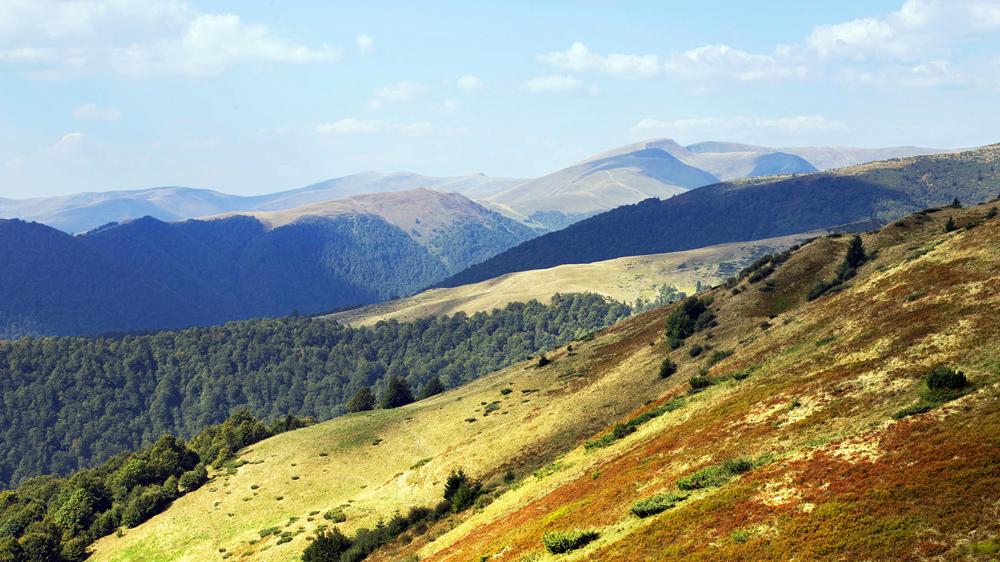 Екологи закликають стати на захист гірського масиву Свидовець