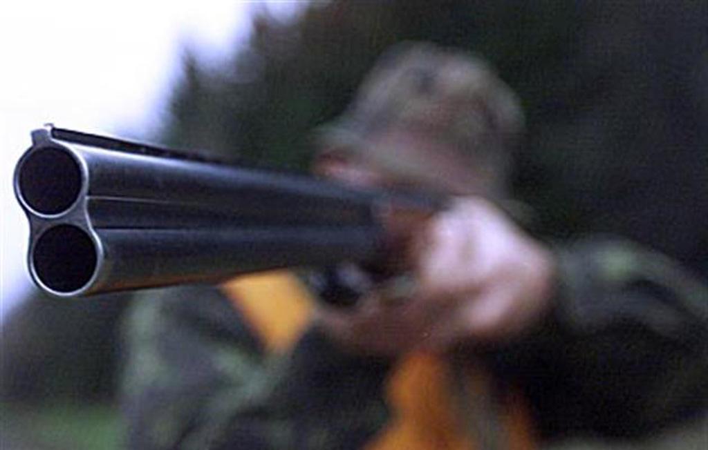 Полицейские задержали браконьера, убившего лосиху с лосенком