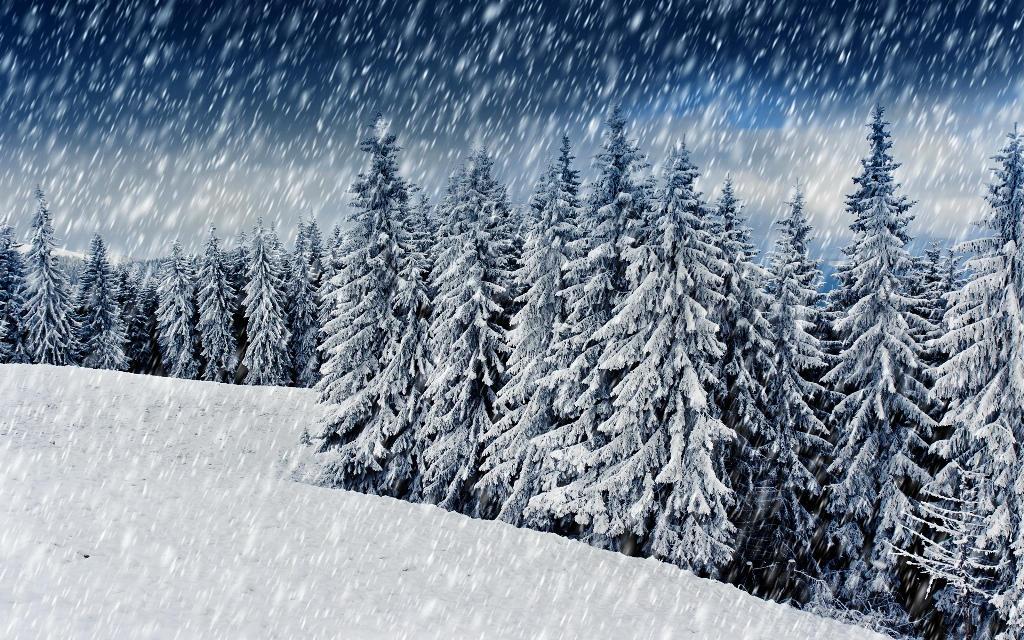 "Результат пошуку зображень за запитом ""карпати снігопад"""